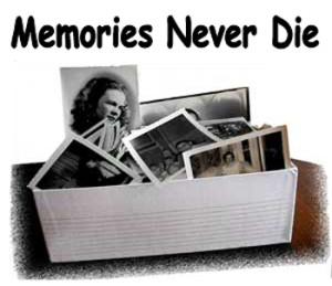 cliff ping memories never die art